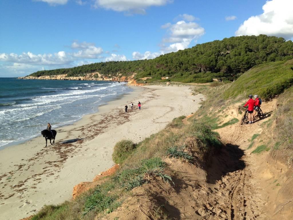 Minorque cami cavalls equitation plage
